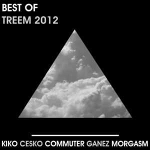 VARIOUS - Best Of Treem 2012