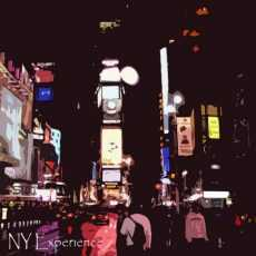 STURN, Sylvain - NY Experience